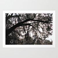 Finger Trees Art Print