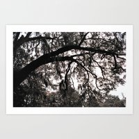 Finger Trees Art Print