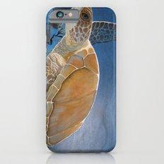 sea turtle by Jes iPhone 6 Slim Case