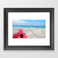 Hibiscus  Framed Art Print