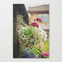 flowers... Canvas Print