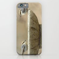iPhone & iPod Case featuring Sweet Duo by Maureen Anne