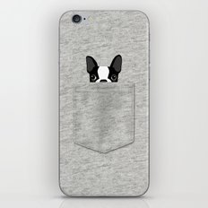 Pocket Boston Terrier - Black iPhone & iPod Skin