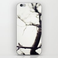 Small Tree iPhone & iPod Skin
