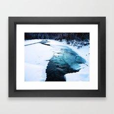 River Monster Framed Art Print