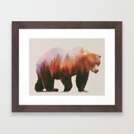Brown Bear Framed Art Print