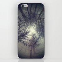 Circle of misty trees iPhone & iPod Skin