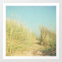 Path To Paradise Art Print