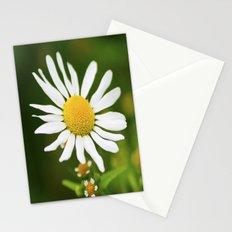 Wild Daisy Stationery Cards