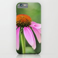 Coneflower iPhone 6 Slim Case