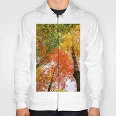 Colorful autumn forest Hoody