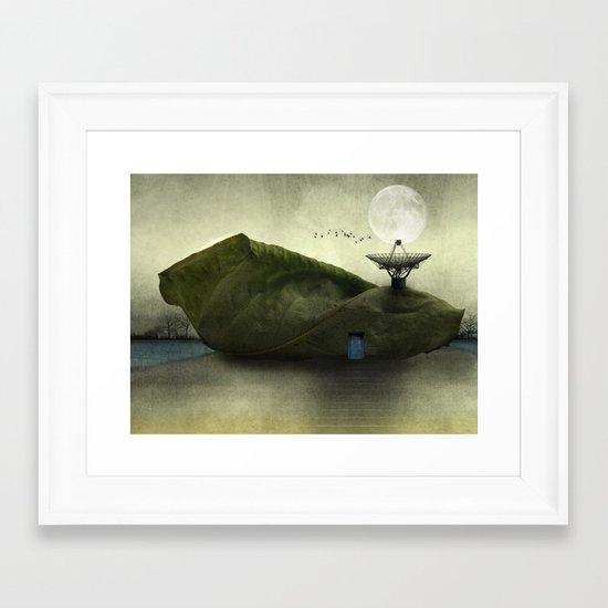 Leaf Peepers - Susan Weller Framed Art Print