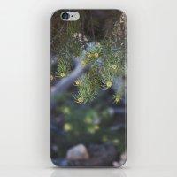 Summer in Big Bear iPhone & iPod Skin