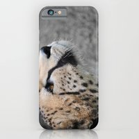 iPhone & iPod Case featuring Cheetah 1 by Stephie Butler Photography