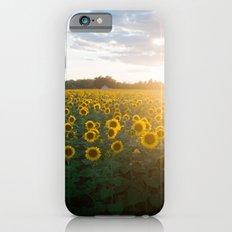 Sunflower Day Slim Case iPhone 6s