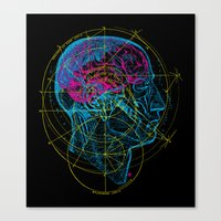 Anatomy Brain Canvas Print