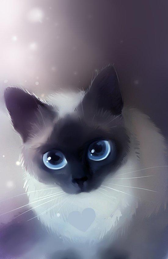 Siamese Cat Art Print