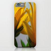 Sun 2 iPhone 6 Slim Case