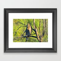 Patient Observer Framed Art Print