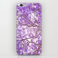 Purple Dream iPhone & iPod Skin