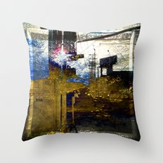 Beauty Beyond The Frame Series Throw Pillow