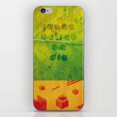 Un Dia iPhone & iPod Skin