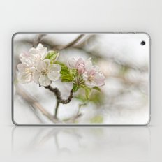 Apple Blossom Branch Laptop & iPad Skin