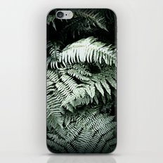 Ferns iPhone & iPod Skin