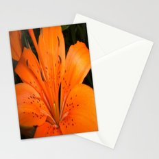 ORANGE BLOOM Stationery Cards