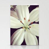 lilys Stationery Cards