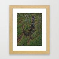 Blue Ridge Mountains North Carolina North America Framed Art Print