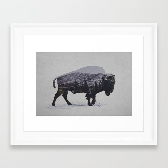 The American Bison Framed Art Print