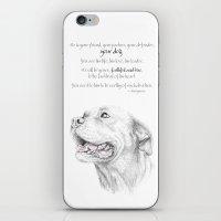 Murphy :: Loyalty iPhone & iPod Skin
