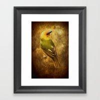 Avian Art Framed Art Print