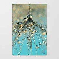 Dandy Shower Canvas Print