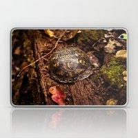 Turtle In A Shell  Laptop & iPad Skin