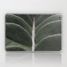 Money Plant Laptop & iPad Skin