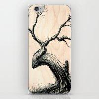 Tree In Bloom  iPhone & iPod Skin