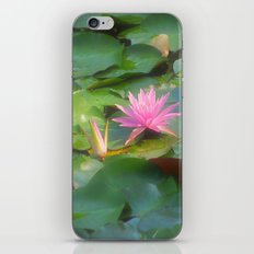 lilly pad iPhone & iPod Skin