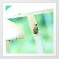 Snail Crossing Art Print