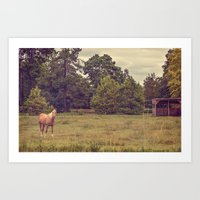 Traditional American Cou… Art Print