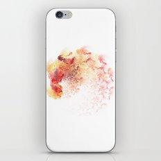 fine Coloured iPhone & iPod Skin