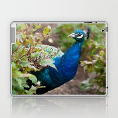 You Looking at Me? Laptop & iPad Skin