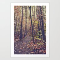 Fall Trail Art Print