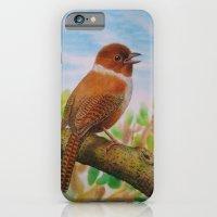 A Brown Bird iPhone 6 Slim Case