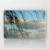 Through Willows Laptop & iPad Skin