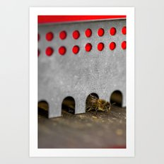 The Bee has the entry of the hive Art Print