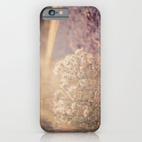 iPhone & iPod Case featuring Sunlight by Ashley Gratton
