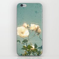 A New Season iPhone & iPod Skin