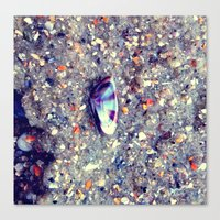 Shell Life Canvas Print